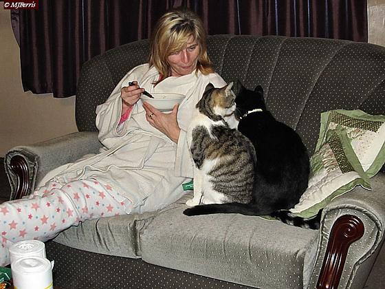 65 Ellen and cats