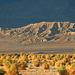Death Valley (3426)