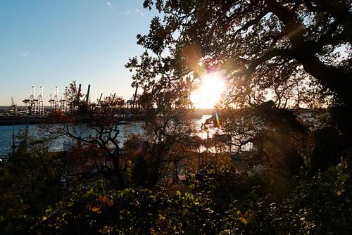 Herbstsonne bei Övelgönne -- sonne-1170600-co