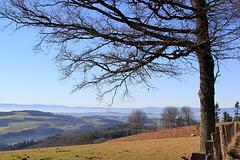 Horizons des Monts du Beaujolais (Rhone, France)