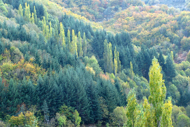 Automne en Ardèche 2