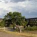 Wasta, SD railroad bridge (0311)