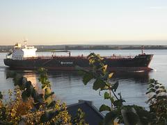 Baltic Sapphire auf der Elbe