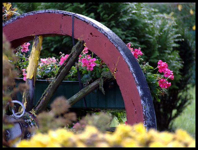 Ende eines Gartenjahres