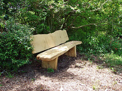 Seat By First Pond