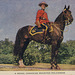 A Royal Canadian Mounted Policeman