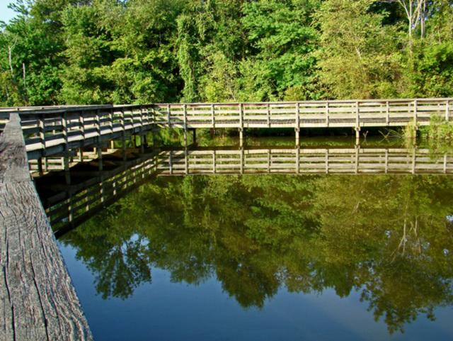 Boardwalk reflection