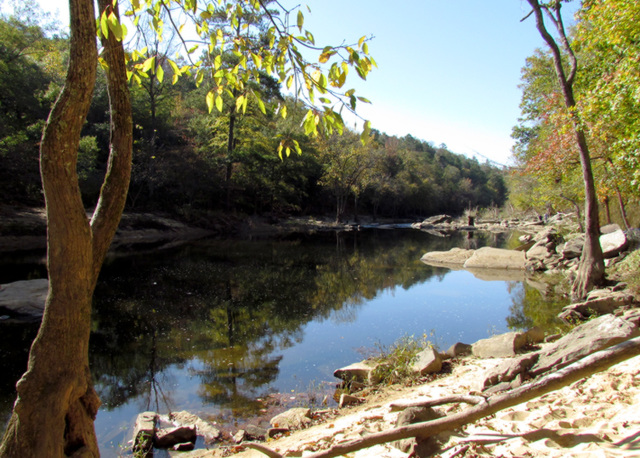 Reflection on the Locust Fork