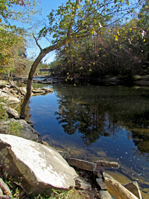 Locust Fork River Reflections