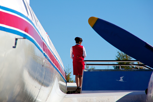 IL18 Flight attendant