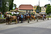 Moritzburg 2013 – Horses