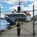Marina Svetaeva in Hobart