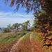 Herbst -2