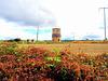 Old water tower Lichfield
