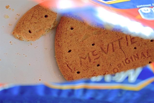 The Last Biscuit