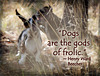 """279/365: """"Dogs are the Gods of Frolic."""" ~ Henry Ward Beecher"""