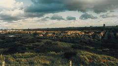 View of the Vogelwijk (Bird neighbourhood) in The Hague