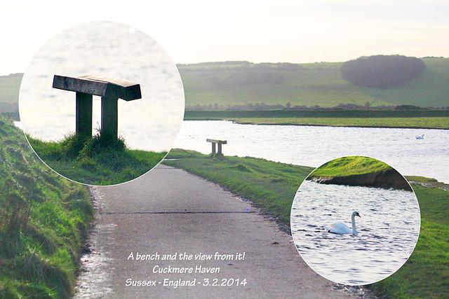 Bench & swan - Cuckmere - 3.2.2014