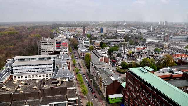 View of The Hague, looking north