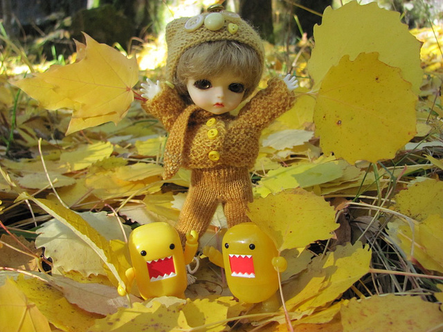 Eggie and fall leaves