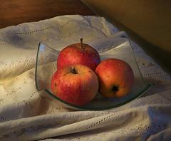Les pommes du jardin