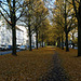 allee-1170387