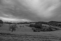 Schwarzweiß - 20131027