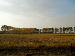 HFF nell'autunno lombardo