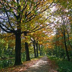 Nederland: Apeldoorn - Dierens Kanaal