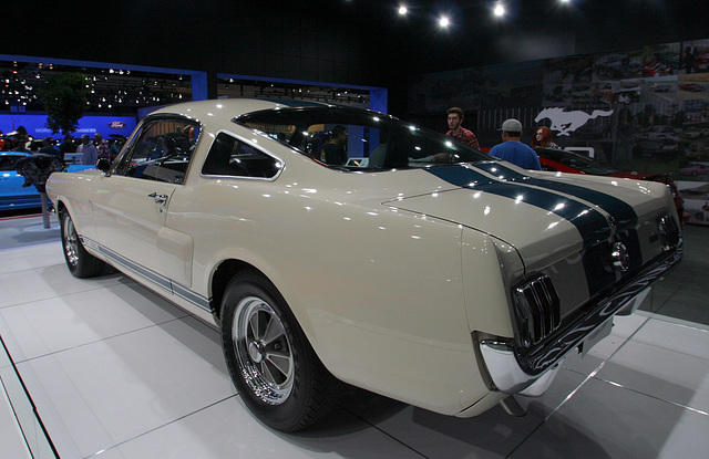 Mustang Shelby GT350 #187 (3777)
