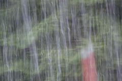 507 - Plou