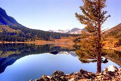 Tioga Lake, 1979 (180°)