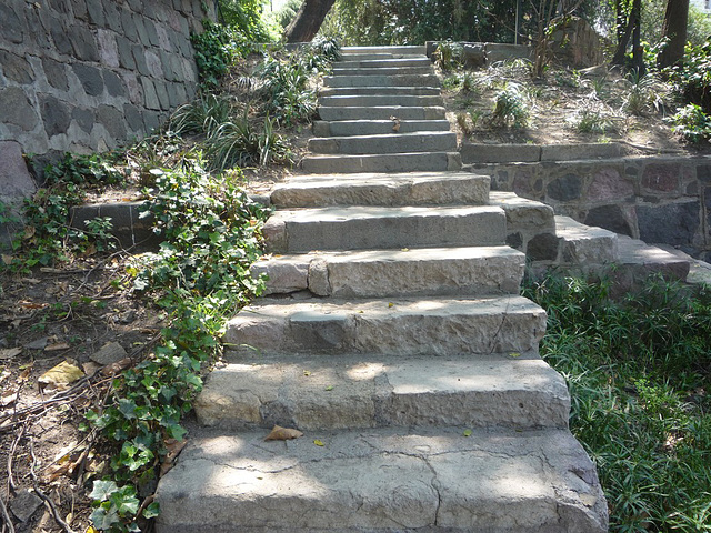 Escalera jardín Japonés de Santiago
