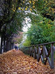 autunno a Mondovì