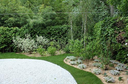 Le parfum du blanc- Jardin 19 (11)