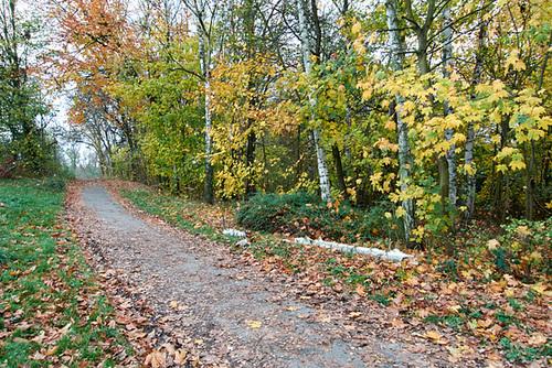 herbstweg-1170669-co