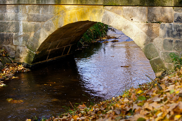 Brücke über den Kaitzbach (2)