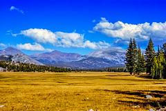 Tuolumne Meadows, Yosemite NP, 1986 (090°)