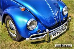 1973 VW Beetle - NTR 624M