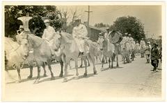 Circus Horses on Parade