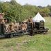 Field Railway