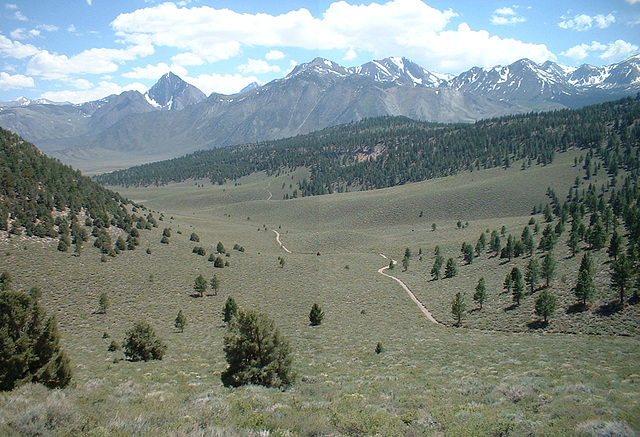 Inyo Mtns 22