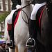 Leiden's Relief – Boots & Horses