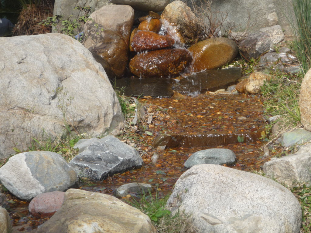Pequeña cascada en el Jardín Japonés de BA
