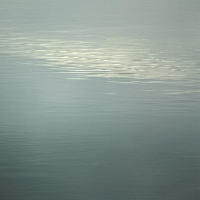 IMG 9173 contemplation