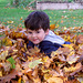 Little Leaf Boy