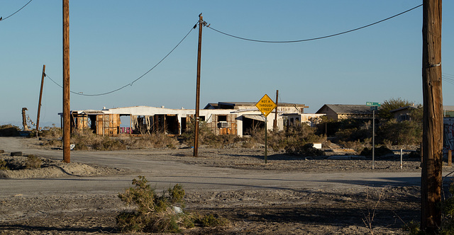 Salton Sea Beach (0762)