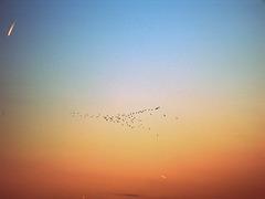 Vol de nuit.