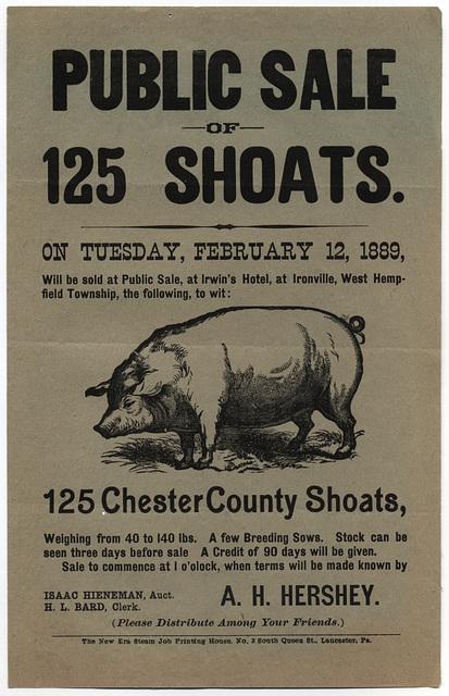 Public Sale of 125 Shoats, Ironville, Pa., Feb. 12, 1889