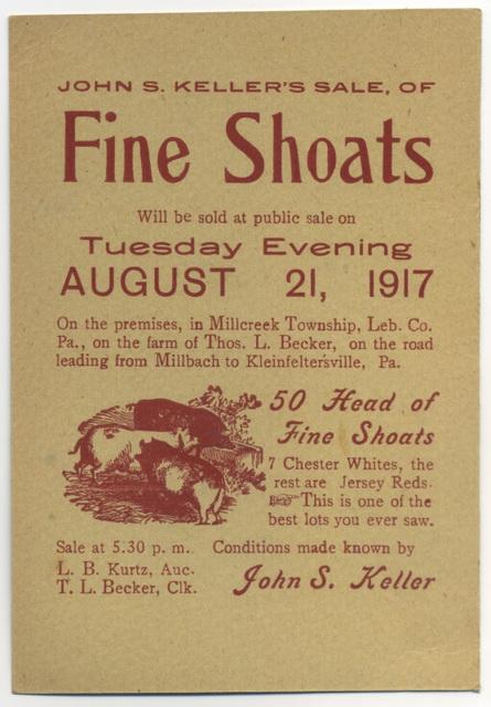 John S. Keller's Sale of Fine Shoats, Lebanon County, Pa., Aug. 21, 1917
